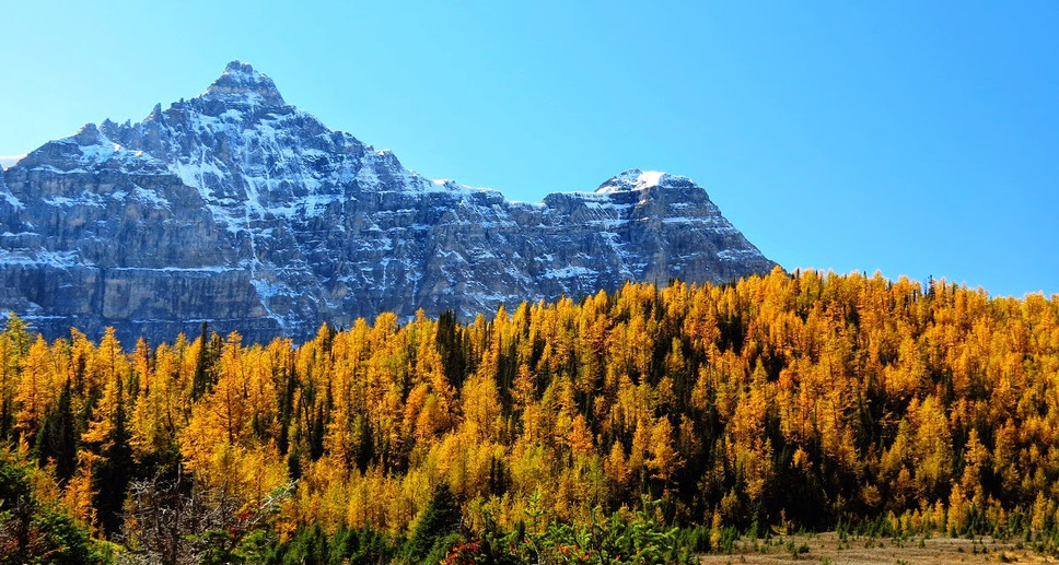 Larch+Valley+24.jpg