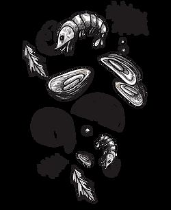 mariscos-negro.png