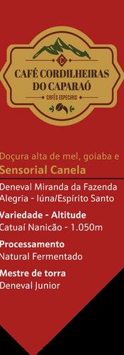 Cordilheira Canela.png