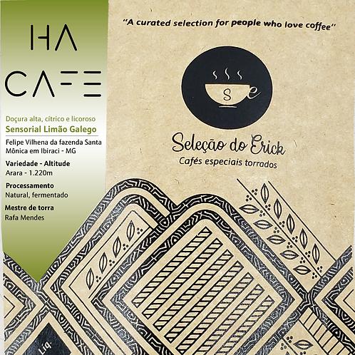Ha Cafe - Sensorial Limão Galego - 100g