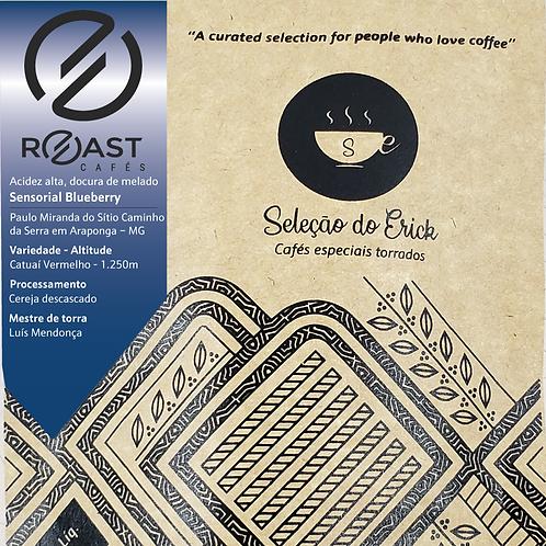 Roast - Sensorial Blueberry - 100g