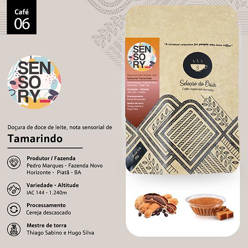 Café 6 - Sensory - Sensorial Tamarindo - 100g