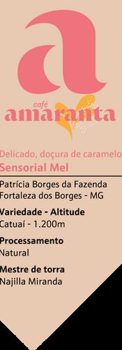 Borges fortaleza Mel e caramelo.png