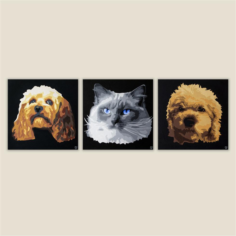 3 Pet Set