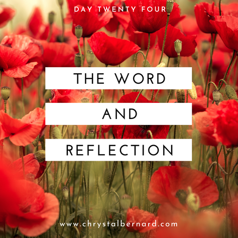Proverbs Challenge Day 24: The Word and Reflection