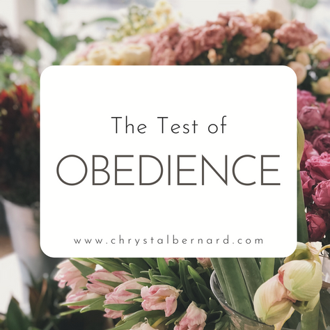 The Test of Obedience