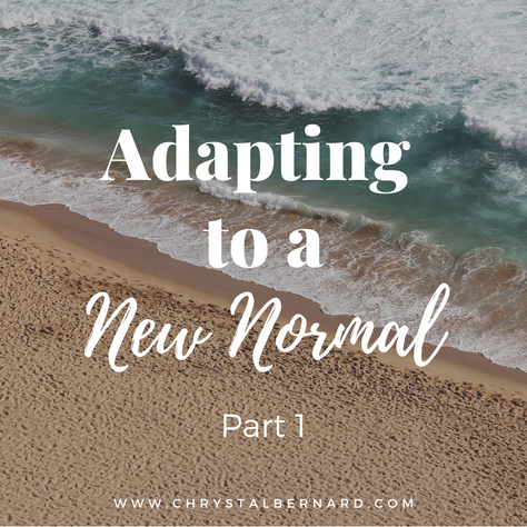 Adapting to A New Normal - Part I