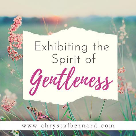 Exhibiting the Spirit of Gentleness