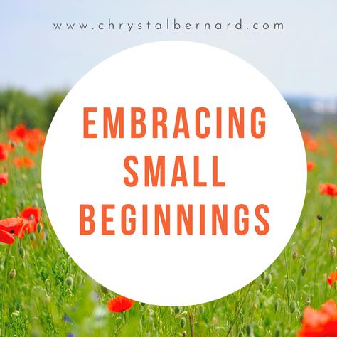 Embracing Small Beginnings