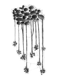 molécules 39