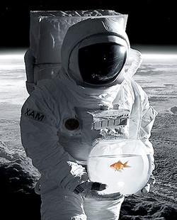 cosmonaute / didier guy