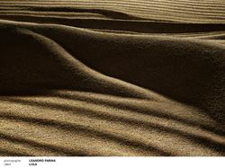 lula 1 _ leandro farina
