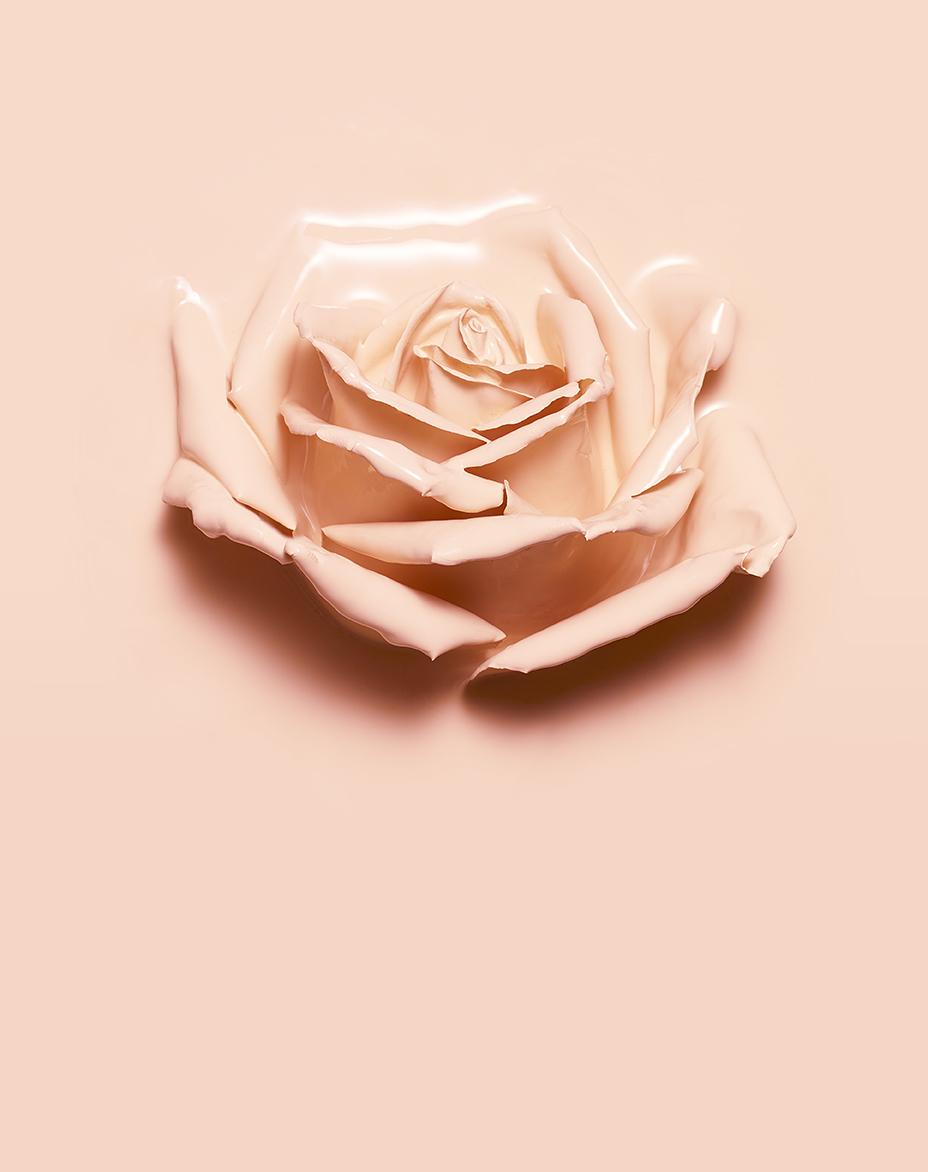 rose / isabelle bojean