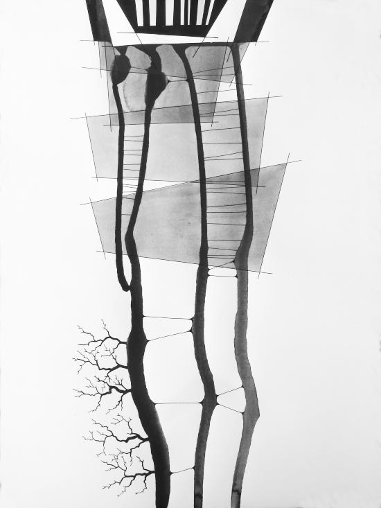 arbres 98