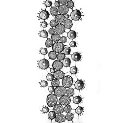 molécules 32