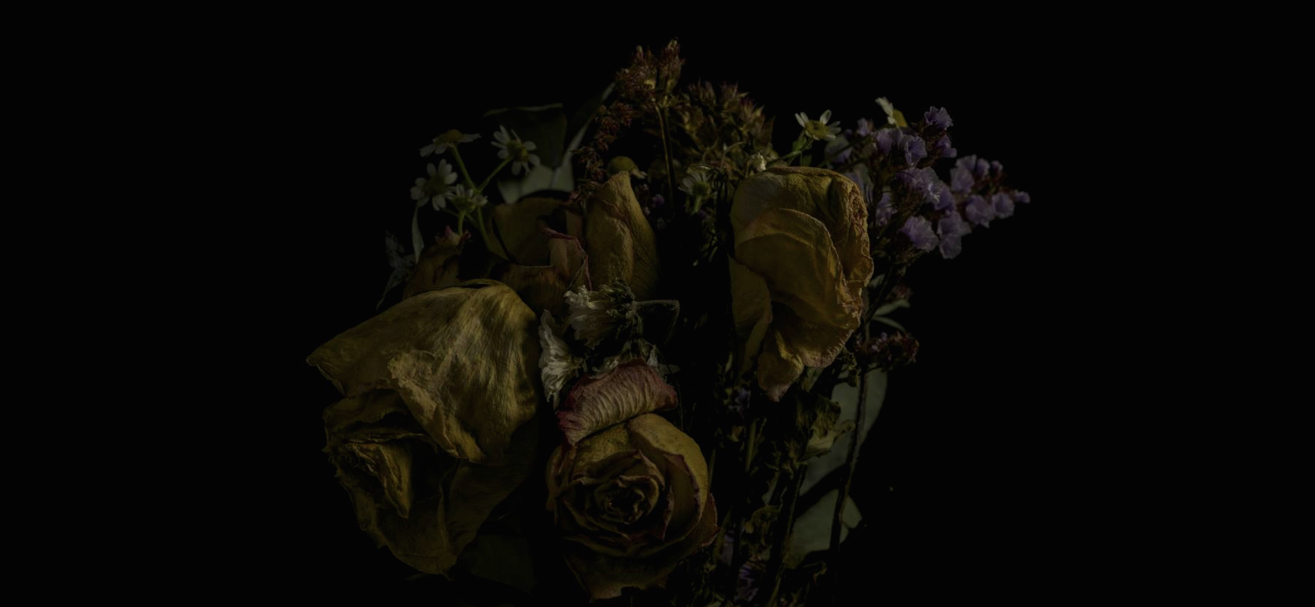 faded flowers 2
