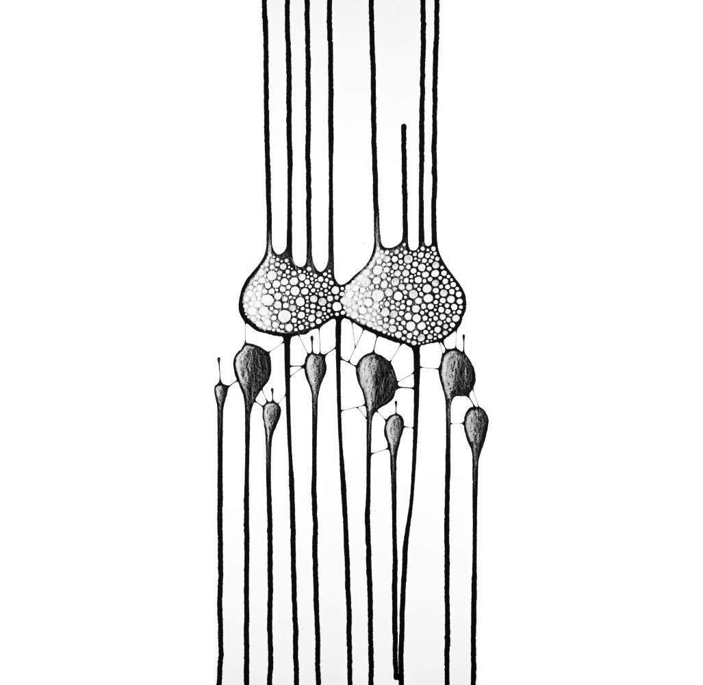 molécules 22
