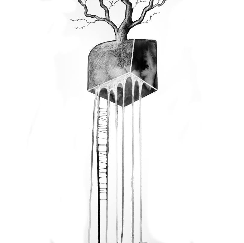 arbre 37