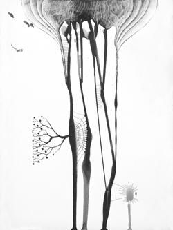 arbre 00