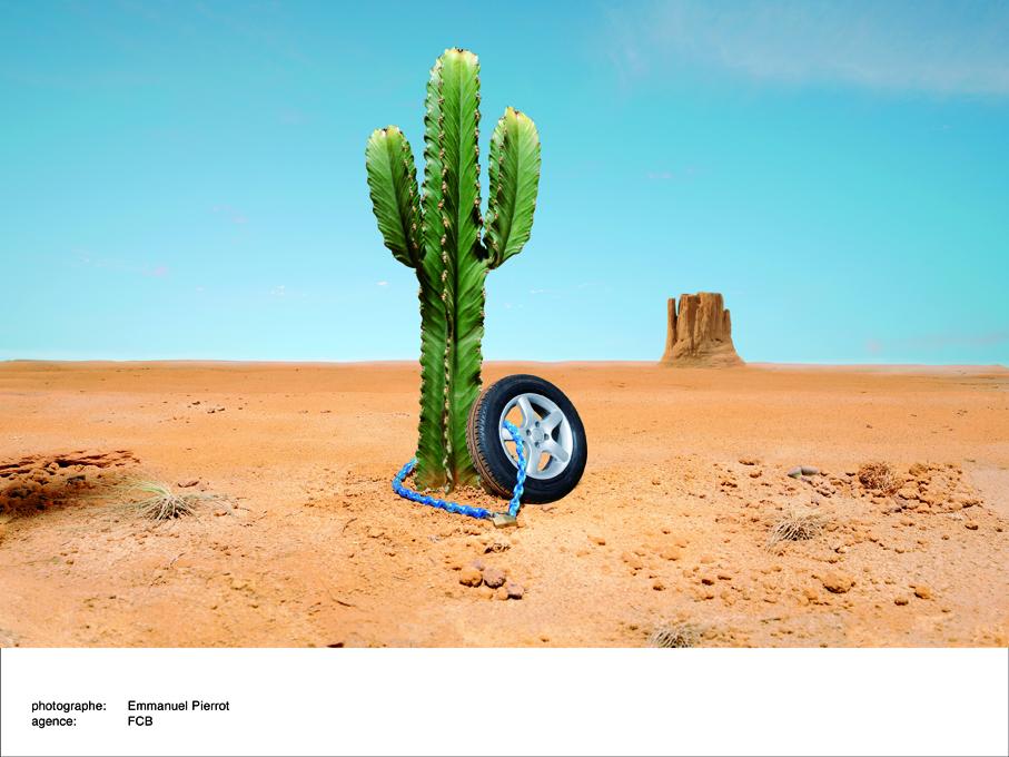 crédit agricole cactus.jpg