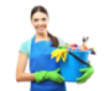 Professonal Cleaning Service - The Shoreditch Cleaners
