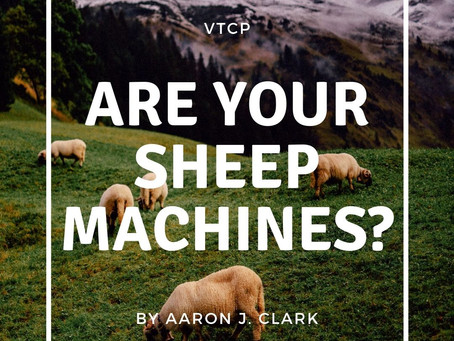 Are Your Sheep Machines?