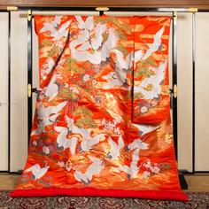 R010-舞鶴桜に牡丹-オレンジ.jpg