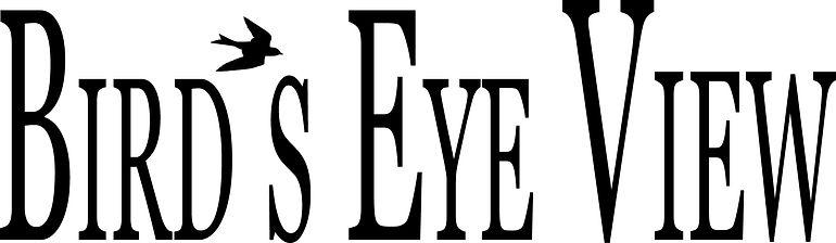 Birds Eye View-Title vinyl outline.jpg