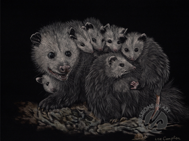 Possum Family, Lisa Compton