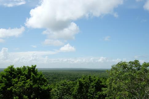 Vista de lo más alto Dzibanché