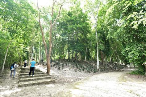 Dzibanché zona maya