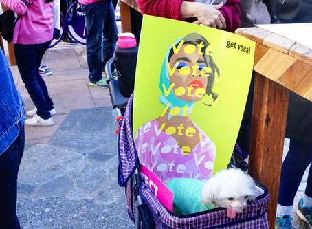 Women's March in LA   Jan 2019