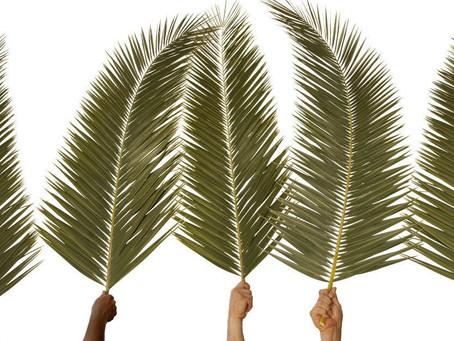On Palm Sunday 2020