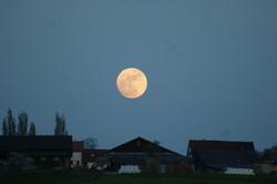 Mond Rudolfstetten