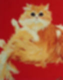 Cat on Red.jpg
