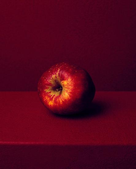 Allan Jenkins / Rotkho apple