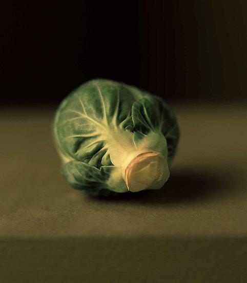Allan Jenkins / Single Brussel sprout