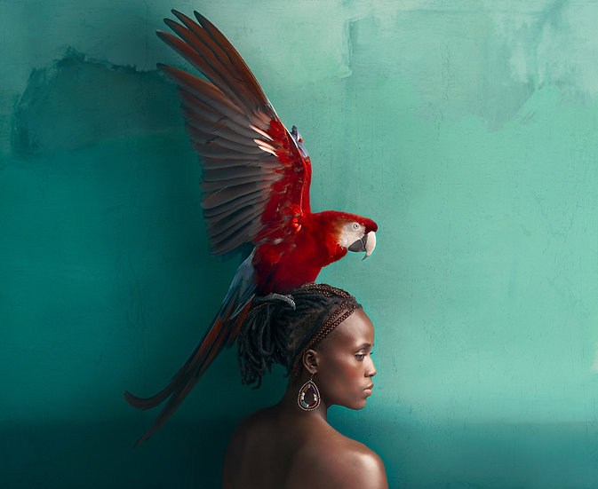 Christopher Wilson / If Icarus Were A Woman