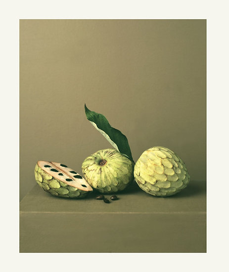 Allan Jenkins / Custard apple