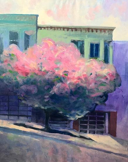 Bertrand de Miollis / L'arbre nuage