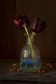 allan-jenkins-midnight-queen-photography