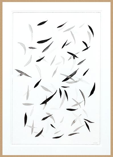 Marc Dubrule / Nuage de feuilles