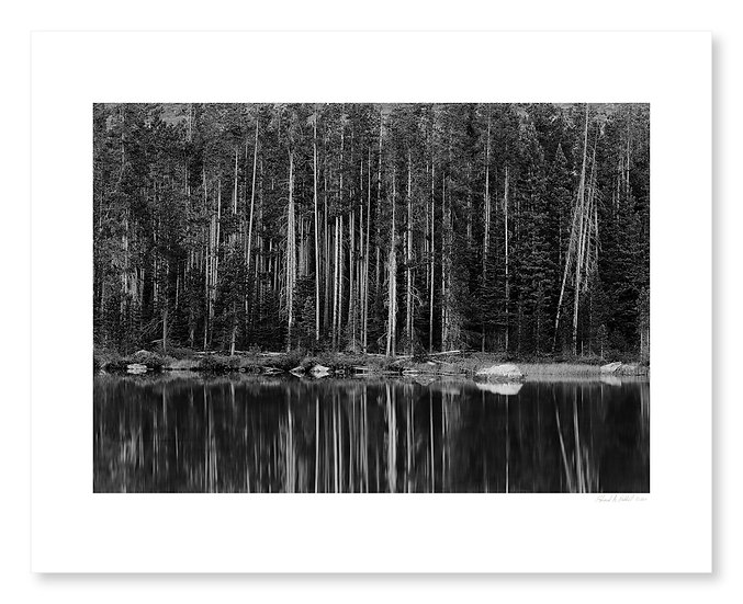String Lake Reflections