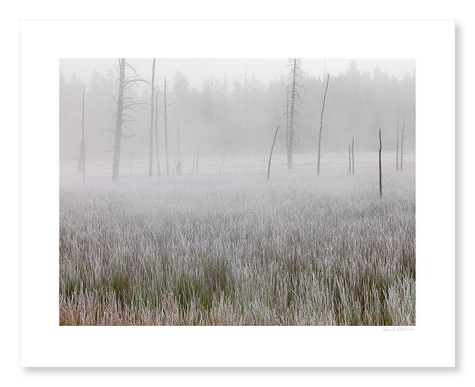Fog Near Fountain Paint Pots