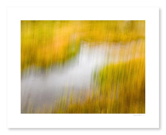 Fall Colors #4
