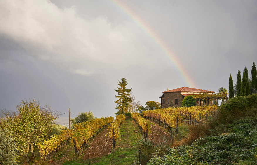 Italy Fall 2017-0065.jpg