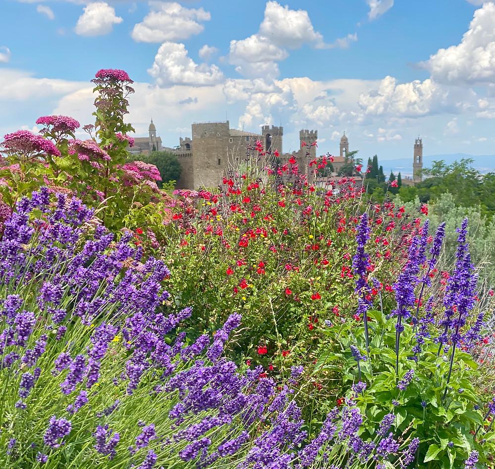 Villa Palazzetta garden and Montalcino fortezza.