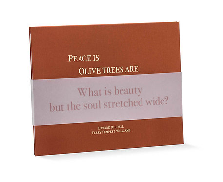 PEACE IS - OLIVE TREES ARE