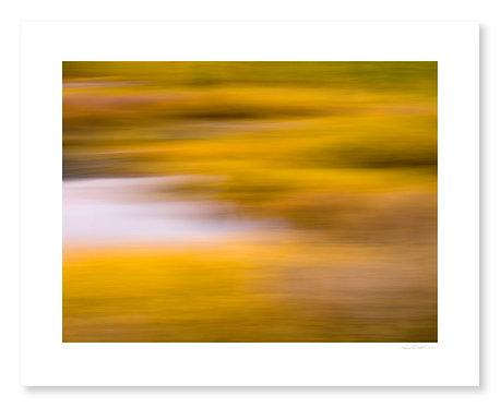 Fall Colors #5