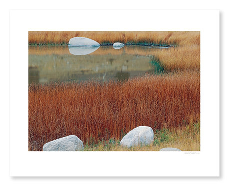 Pond and Rocks, Lamar Valley